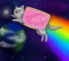nyan cat by Meroda