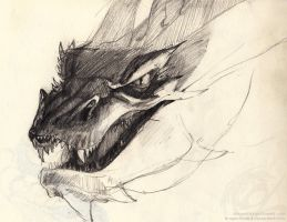 Smaug by dragonlizzard