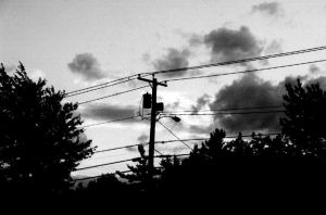 the hum of the wires... by searching4sumthn
