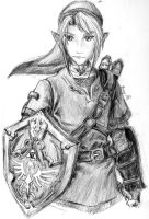 Link by GrayPaladin