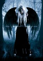 DarK angeL by TuubArt