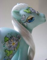 MLP Morning Frost Close-up by eponyart