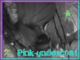 Pwout by pink-underc0at