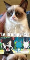 Exceed vs Grumpy Cat by Eroshik