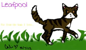 Leafpool by cali-cat
