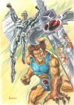 Thundercats and Silverhawks Gouache Art by 777thorman