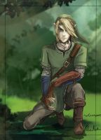 Link by Linouuu