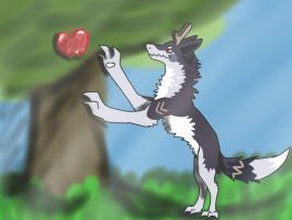 I wants DAT apple..... by WolfPawShadowClaw