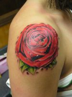 Rose Tattoo by mattymctatty