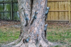 Project 365 - 335 - Tree Huggers Anonymous by jguy1964