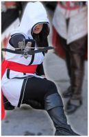 Assassin's Creed Brotherhood Cosplay by DarkEle