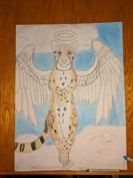 Heaven the Clouded Leopard by KrazyKitty44