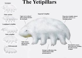 REP: The Yetipillars by Ramul