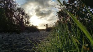Folly Beach Trail - Sunrise by EdwinLMunt