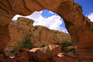 Hickman Bridge, Capitol Reef by Caloxort