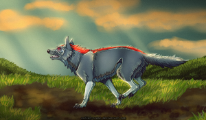 Running wolf by CoLLet-Crane