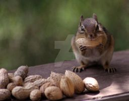 Chipmunk with Almond by RoastedRight76
