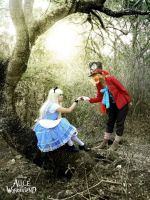 Alice and the Mad Hatter by 23rdAngel
