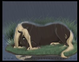 I Don't Like Rain by Equinus