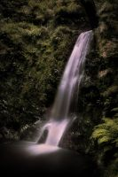 Waterfall with foliage by jenny4