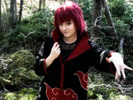 My Sasori no Danna cosplay by IdenCat