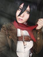 Mikasa Cosplay by a4th