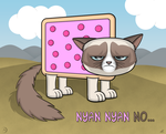 Grumpy Nyan Cat by Apothecy