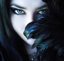 Feathers by nathaly889