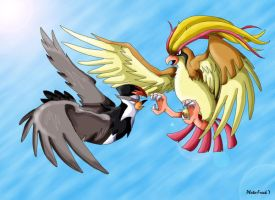 Pidgeot vs Staraptor by Photo-Freak7