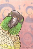 Green Cheek Conure ACEO by flyingfluff