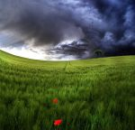 The weather is changing by Pamba