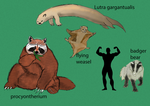 Mustelidae Revenge, the new Megafauna ! by kamarodu21
