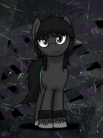 Cute DarkFlash by ToMaz777