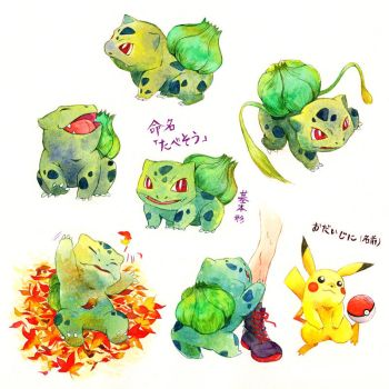 Bulbasaur by ichiyon