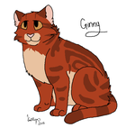 Harry Potter Cats - Ginny by BanditKat