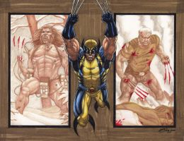 Another Wolverine PSC by JesterretseJ