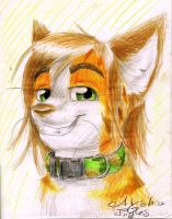 Pizzacat Close-up Portrait by Tylar-I