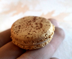 1:1 Scale Coffee Macaron by sonickingscrewdriver