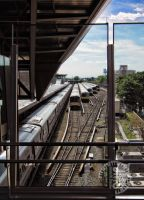 Trains at Jamaica Station by steeber