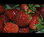 Strawberry_01 by Abirvalg1989