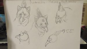 Kennocha sketches by Angelwolf-95