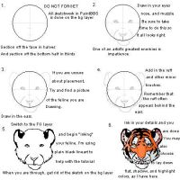 PaintBBS Tiger Head Tutorial by AngelTigress03