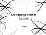 Calliographic Brushes For Gimp by Inspecti