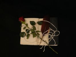 Book and rose 5 by smaragdistock
