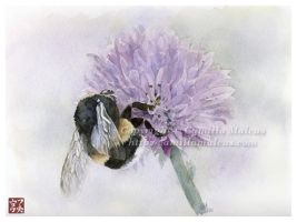 Bumble-bee by CamillaMalcus