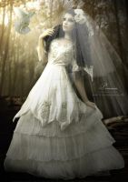 PRONOVIAS by babsartcreations