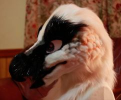 Bearded Vulture Fursuit WIP by JKfeathers