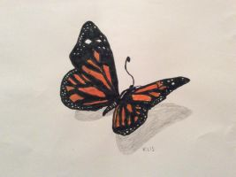 Monarch butterfly drawing by me :) by alucardserasfangirl