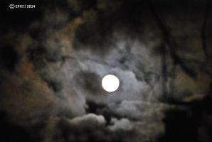 Mystikal Winter Moon 0137 12-6-14 by eyepilot13