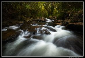 Untitled Maui River by aFeinPhoto-com